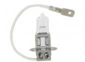 Ampoule H3 12V/24V 55W/70W