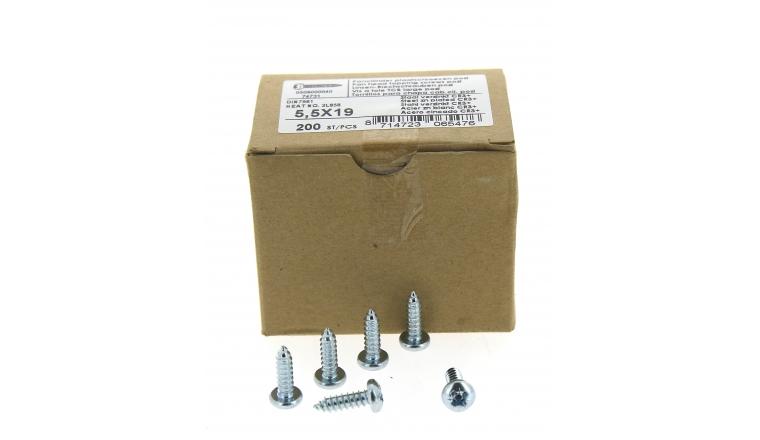 Boîte de 200 Vis à tête cylindrique Cruciforme Bombée Large Ø 5.5 x 19 mm
