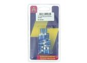 Lot de 10 Fusibles 15 A 2 Fiches Bleu Ref HF600440 - Casteels
