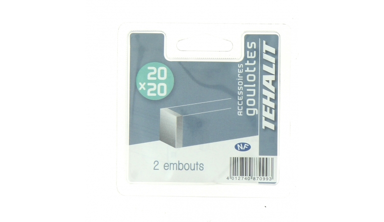 Lot de 2 Embouts de Finition - Goulotte PVC 20 x 20 mm - Ref GPV200206B - Tehalit