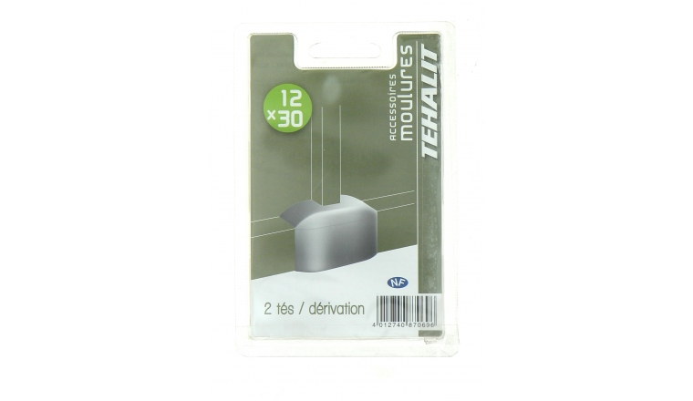 Lot de 2 dérivations - Moulure PVC 12 x 30 mm - Ref GPM12308B - Tehalit
