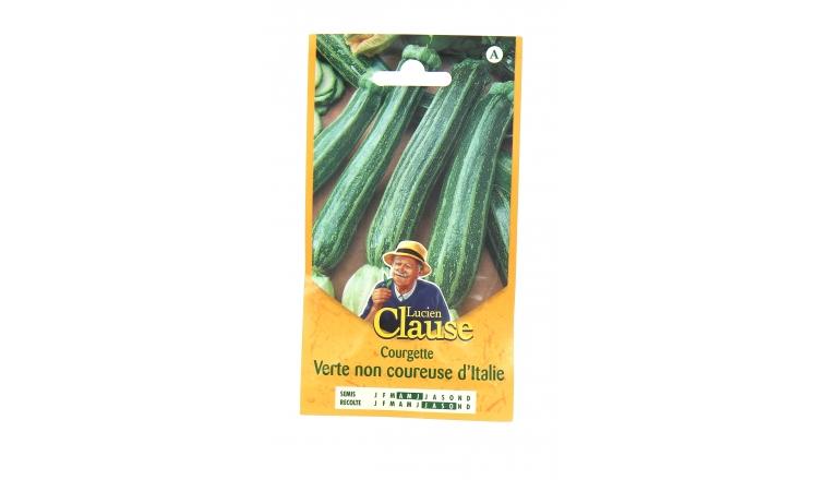 Courgette - Verte non Coureuse d\'Italie - Clause