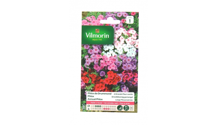 Phlox de Drummond - Grande Fleur Varié - Vilmorin