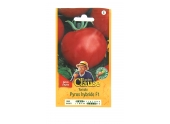 Tomate - Pyros Hybride F1 - Clause