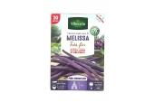 Haricot Violet - Melissa - Vilmorin