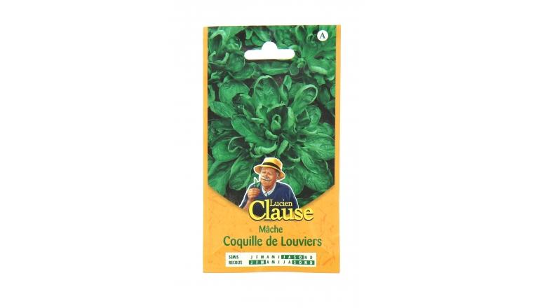 Mâche - Coquille de Louviers - Claause
