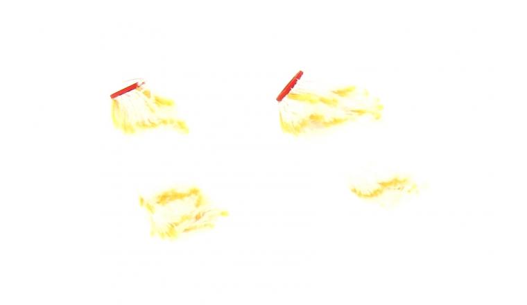 Lot de 2 Recharges Polyamide spécial Boiserie 60 mm pour mini rouleau