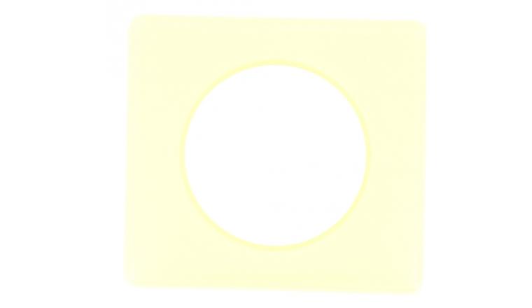 Plaque de Finition Simple Pamplemousse - Legrand Céliane 99845